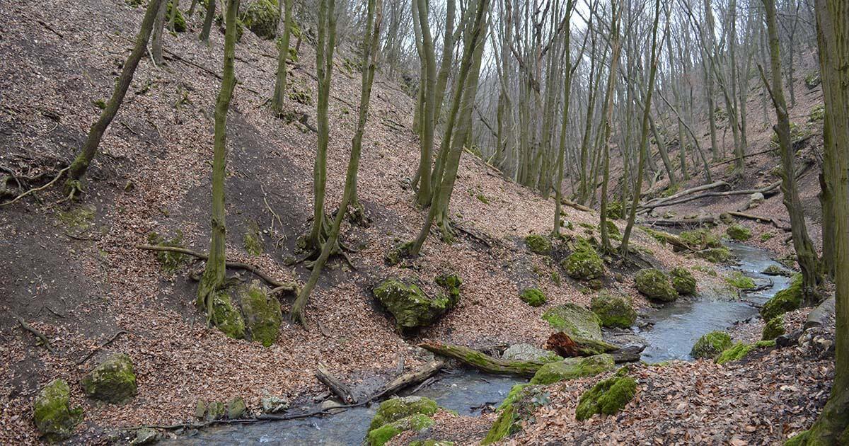patakfolyás szűk völgyben